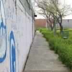 Graffiti-Entfernung in Freiburg